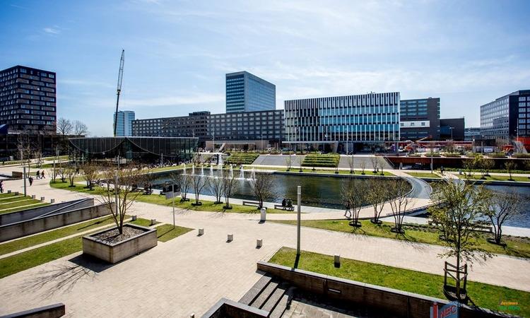 Đại học nghiên cứu tại Hà Lan