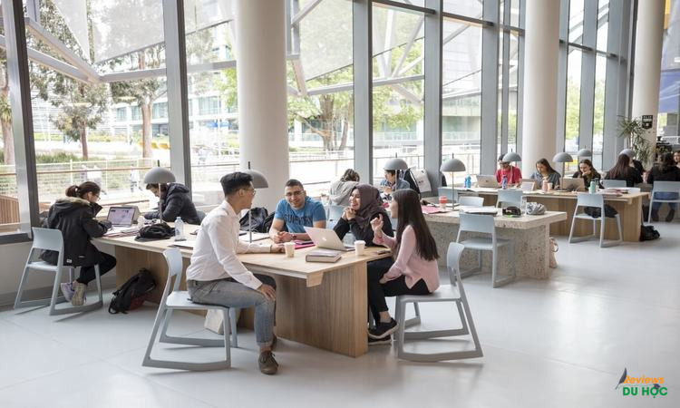 Các trường đại học G8 tại Úc là gì?